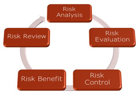 ISO14971:2012 Process